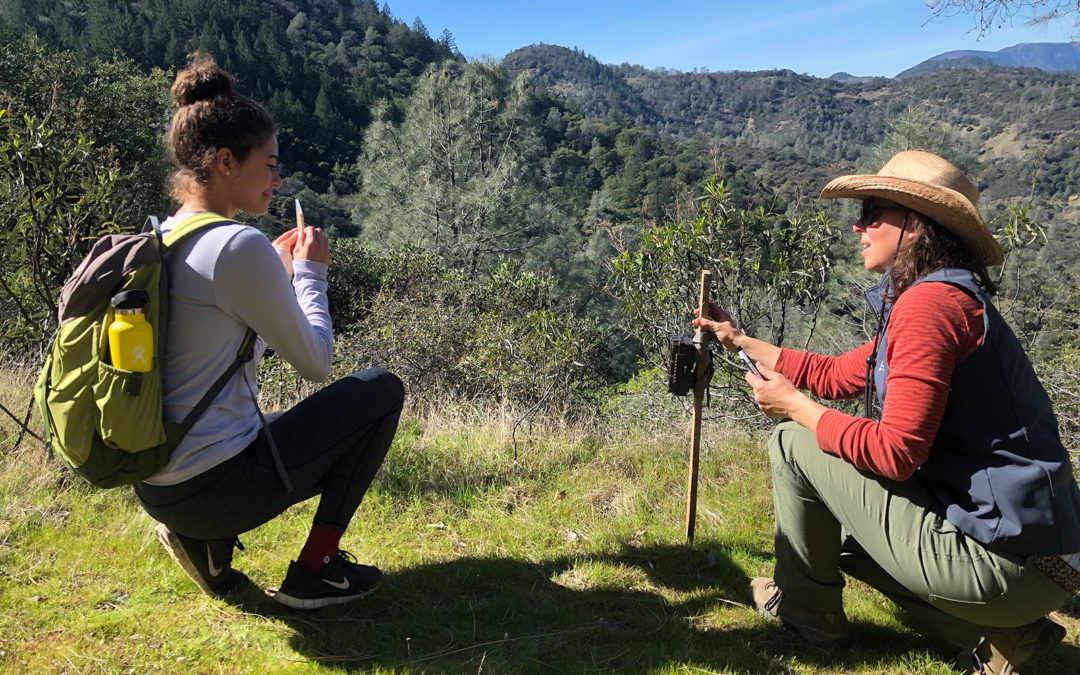 Napa Youth Stewardship Council trains at Wildlake Preserve
