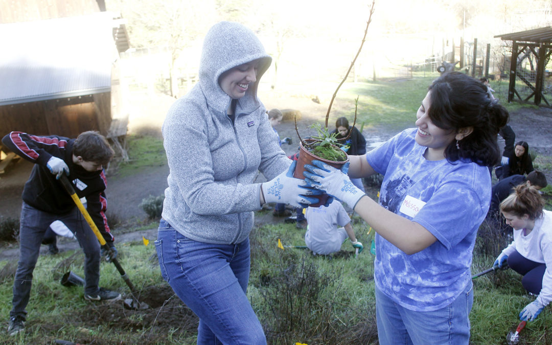 Napa Youth Stewardship Council accepting applications