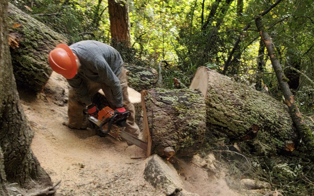 Linda Falls trail cleared with Clif Family Winery help