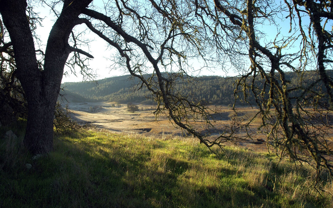Land Trust and Open Space District complete conservation easement over 1,900 acres